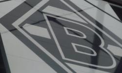 Borussia M´gladbach - Hoffenheim (Besuch mit den F-Junioren) 2014_66