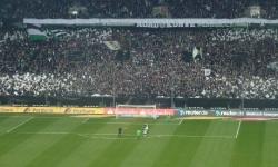 Borussia M´gladbach - Hoffenheim (Besuch mit den F-Junioren) 2014_90