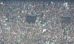 Borussia M´gladbach - Hoffenheim (Besuch mit den F-Junioren) 2014_92