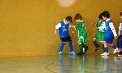 Dietmar-Müller-Hallen-Cup 2013 (Bambini)_14