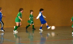 Dietmar-Müller-Hallen-Cup 2013 (Bambini)_18